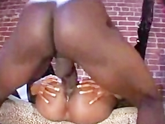 Jada Both Holes Split Open By Bbc black ebony cumshots ebony swallow interr