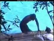 Hidden Interracial Teen Sex At The Pool t ...